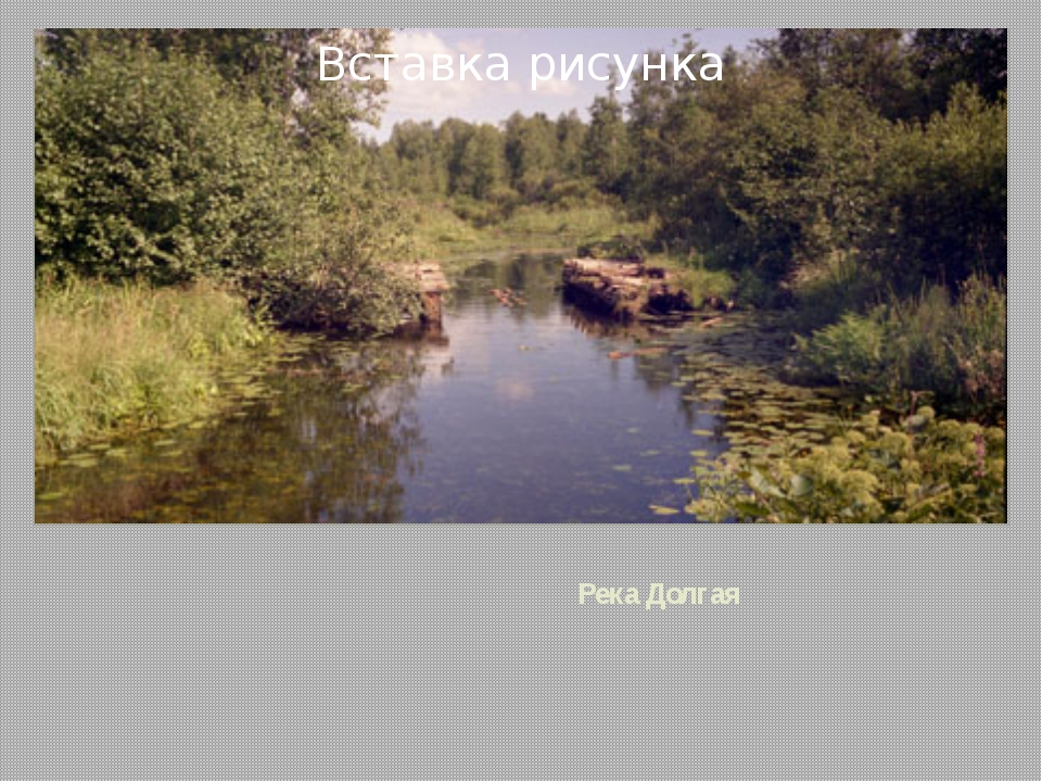 Река Долгая