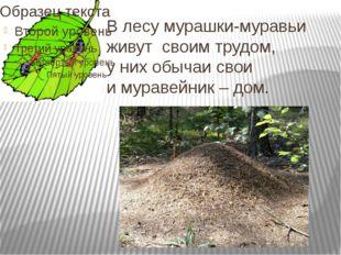 В лесу мурашки-муравьи живут своим трудом, у них обычаи свои и муравейник – д