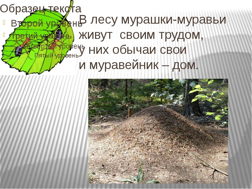 В лесу мурашки-муравьи живут своим трудом, у них обычаи свои и муравейник – д...