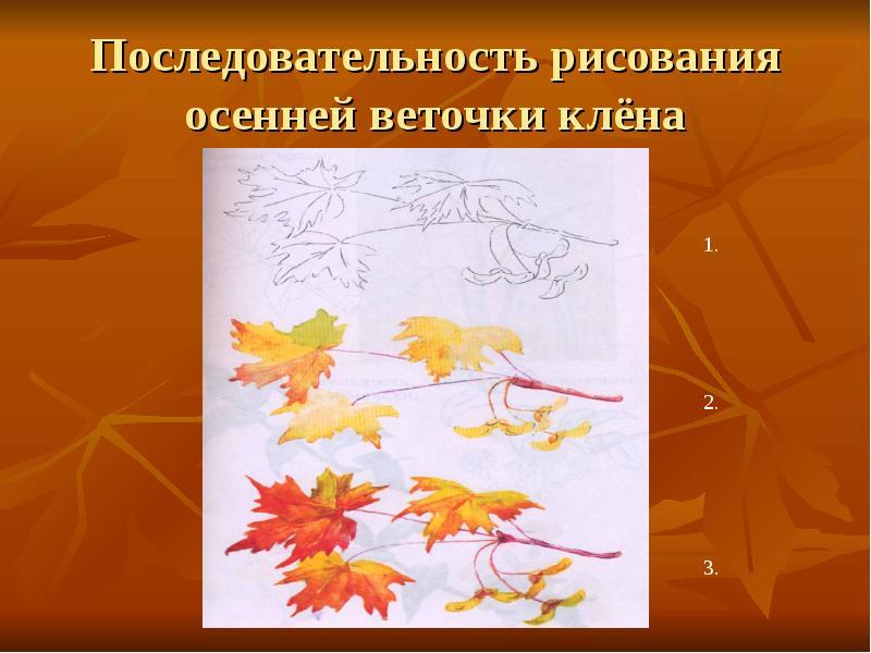 http://mypresentation.ru/documents/d69a667969faffb4a8aeb6d9ef5603fe/img5.jpg