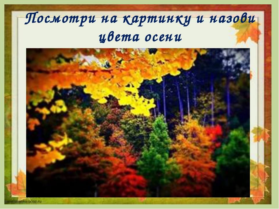 Посмотри на картинку и назови цвета осени