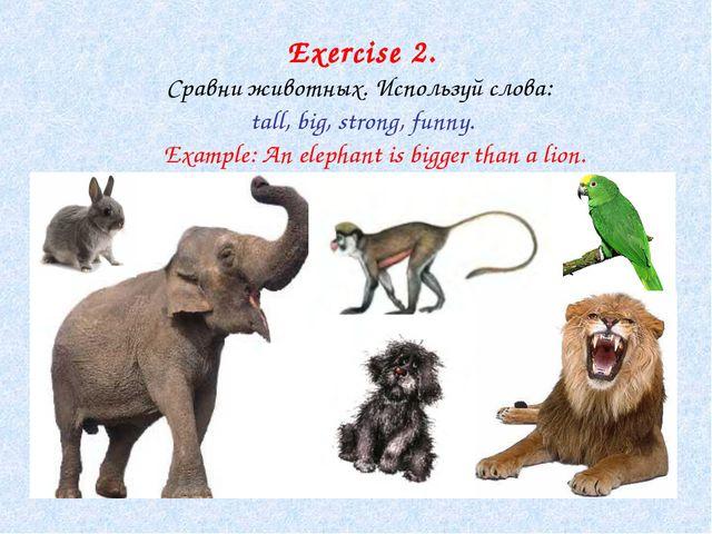 Exercise 2. Сравни животных. Используй слова: tall, big, strong, funny. Examp...