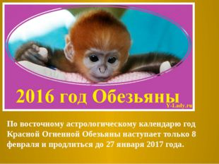 По восточному астрологическому календарю год Красной Огненной Обезьяны насту