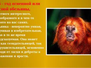 2016 - год огненной или красной обезьяны, животного интересного, многообразн
