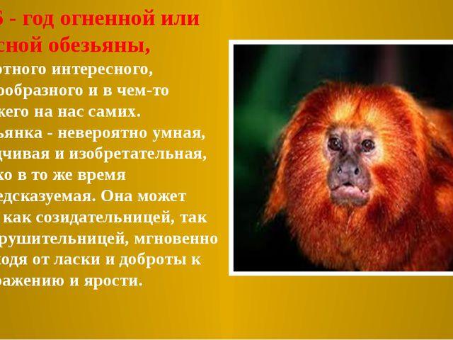 2016 - год огненной или красной обезьяны, животного интересного, многообразн...