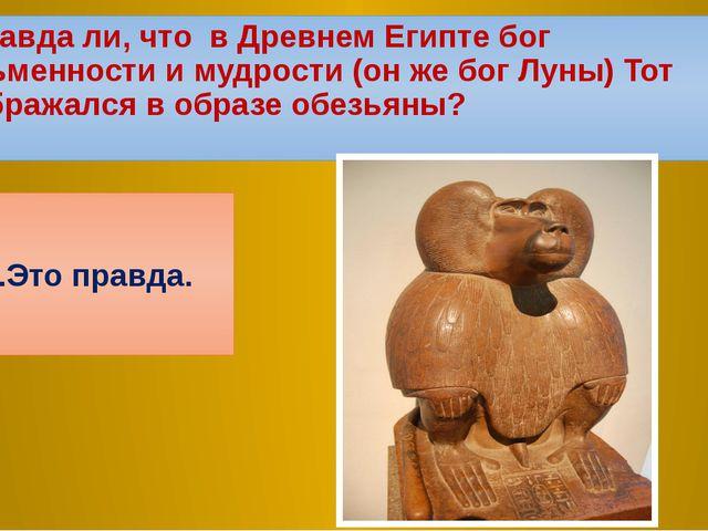 4.Правда ли, что в Древнем Египте бог письменности и мудрости (он же бог Луны...