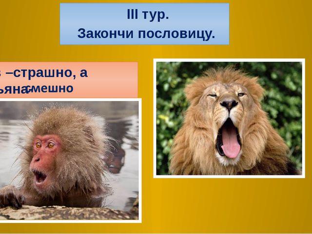 2.Лев –страшно, а обезьяна- III тур. Закончи пословицу.