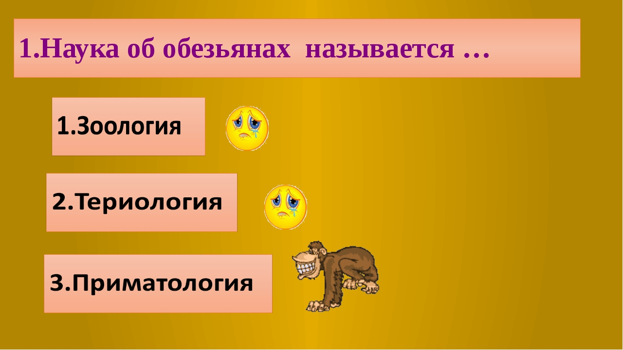 1.Наука об обезьянах называется …