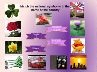 England Scotland Wales Northern Ireland Match the national symbol with the na
