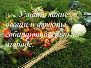 Цель: Узнать какие овощи и фрукты собирают осенью на огороде.
