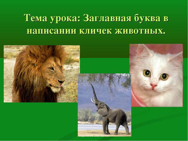 Тема урока: Заглавная буква в написании кличек животных. http://www.deti-66.r...