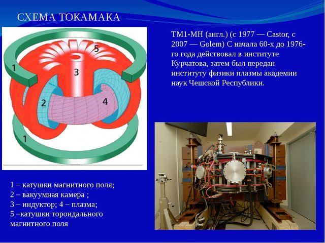 СХЕМА ТОКАМАКА TM1-MH(англ.) (с 1977— Castor, с 2007— Golem) С начала 60-х...