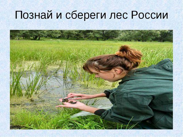 Познай и сбереги лес России