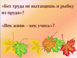 «Без труда не вытащишь и рыбку из пруда»? «Век живи – век учись»?