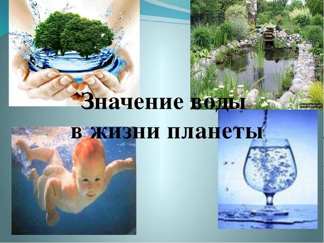 Значение воды в жизни планеты