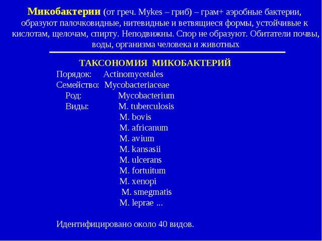ТАКСОНОМИЯ МИКОБАКТЕРИЙ Порядок: Actinomycetales Семейство: Mycobacteriaceae...