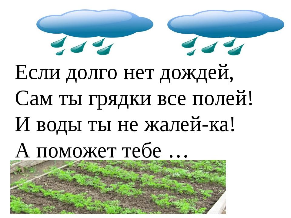 Если долго нет дождей, Сам ты грядки все полей! И воды ты не жалей-ка! А помо...