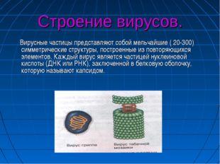 Строение вирусов. Вирусные частицы представляют собой мельчайшие ( 20-300) си