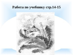 Работа по учебнику стр.14-15