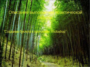 """Описание выполнения практической работы """"Создание буклета в программе Photosh"""