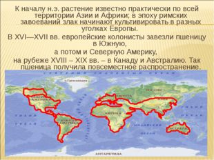 К началу н.э. растение известно практически по всей территории Азии и Африки;