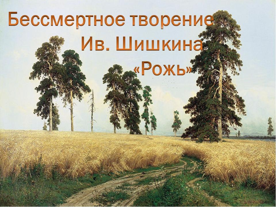 Рожь – однолетнее травянистое растение. Мочковатая корневая система, проникаю...