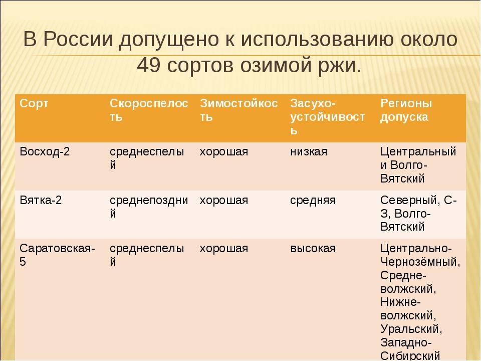 В России допущено к использованию около 49 сортов озимой ржи. СортСкороспело...