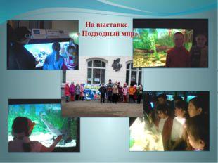 На выставке « Подводный мир»