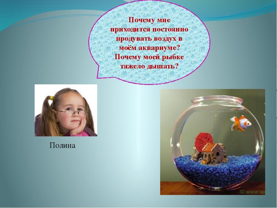 Полина Почему мне приходится постоянно продувать воздух в моём аквариуме? Поч...