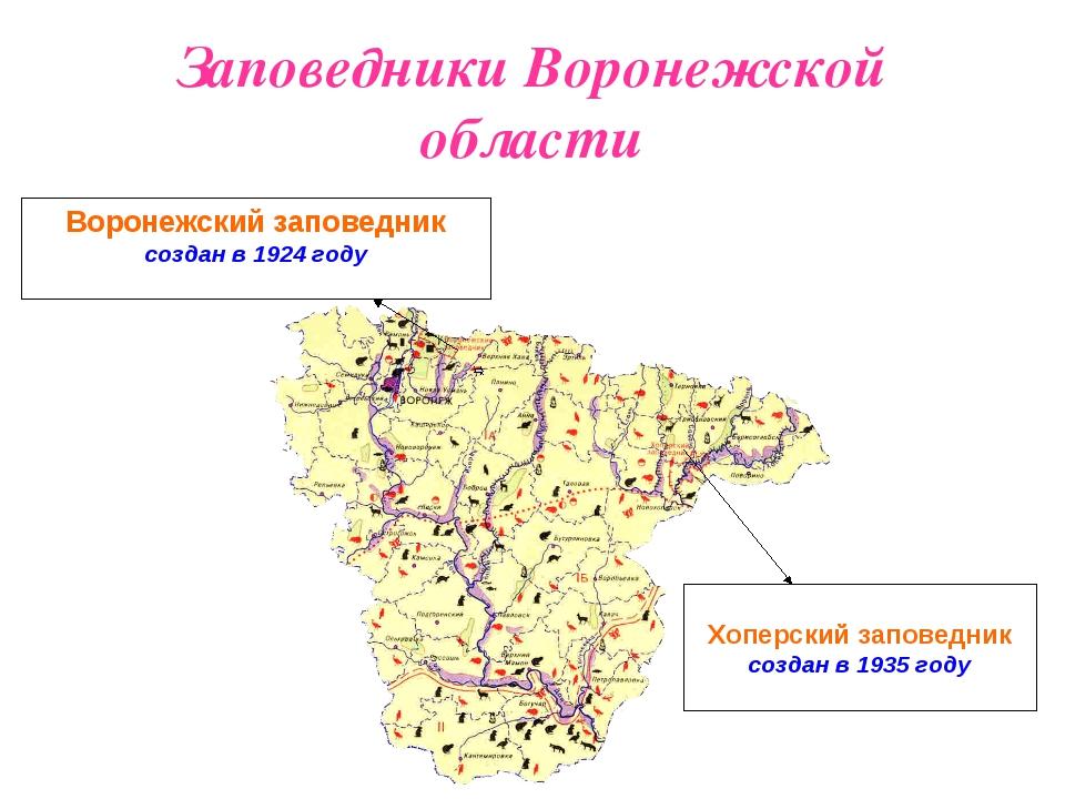 Заповедники Воронежской области Воронежский заповедник создан в 1924 году Хоп...