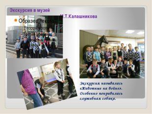 Экскурсия в музей имени М.Т.Калашникова Экскурсия называлась «Животные на вой