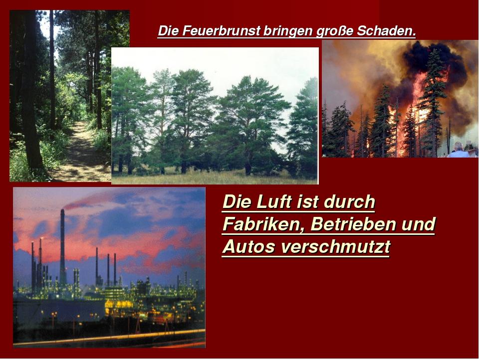 Die Feuerbrunst bringen große Schaden. Die Luft ist durch Fabriken, Betrieben...
