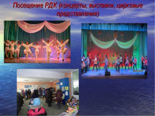 Посещение РДК (концерты, выставки, цирковые представления)