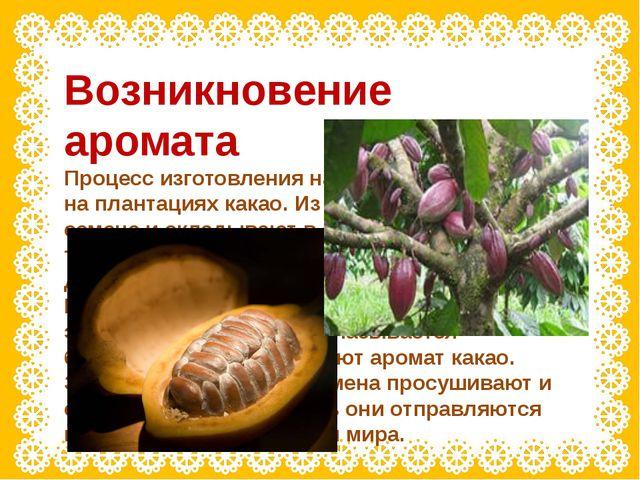 Возникновение аромата Процесс изготовления начинается в тропиках, на плантаци...