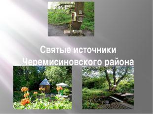 Святые источники Черемисиновского района