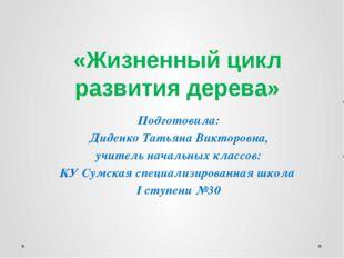«Жизненный цикл развития дерева» Подготовила: Диденко Татьяна Викторовна, учи