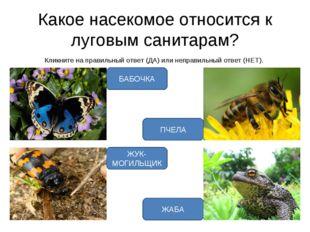 Какое насекомое относится к луговым санитарам? Кликните на правильный ответ (