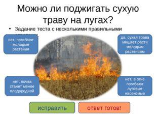 Можно ли поджигать сухую траву на лугах? Задание теста с несколькими правильн