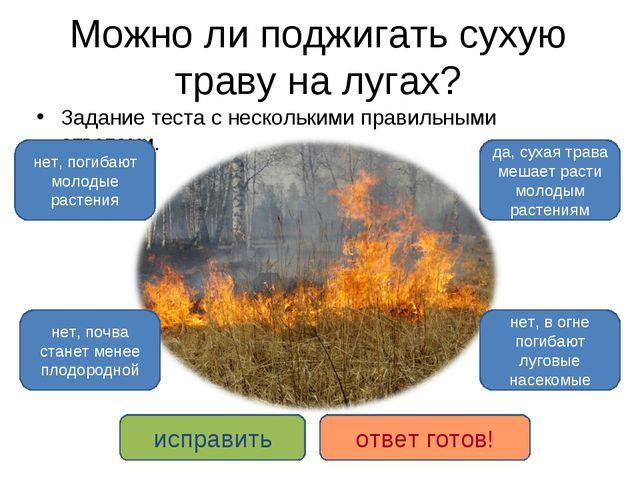 Можно ли поджигать сухую траву на лугах? Задание теста с несколькими правильн...