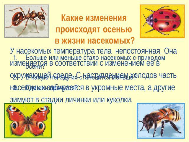 Какие изменения происходят осенью в жизни насекомых? Больше или меньше стало...