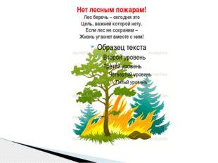 Нет лесным пожарам! Лес беречь – сегодня это Цель, важней которой нету. Если