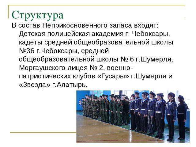 Структура В состав Неприкосновенного запаса входят: Детская полицейская акаде...
