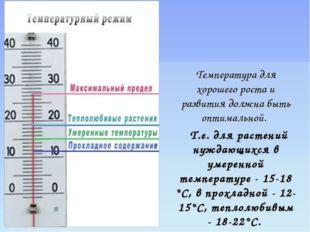 Температура для хорошего роста и развития должна быть оптимальной. Т.е. для