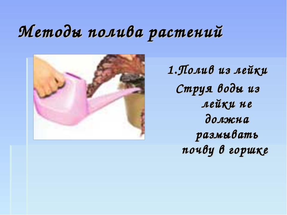 Методы полива растений 1.Полив из лейки Струя воды из лейки не должна размыва...