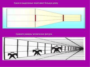 Какая из выделенных линий имеет большую длину Сравните размеры человеческих