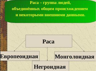 Европеоидная Негроидная Монголоидная Раса – группа людей, объединённых общим