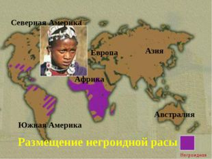 Размещение негроидной расы Северная Америка Южная Америка Азия Европа Африка