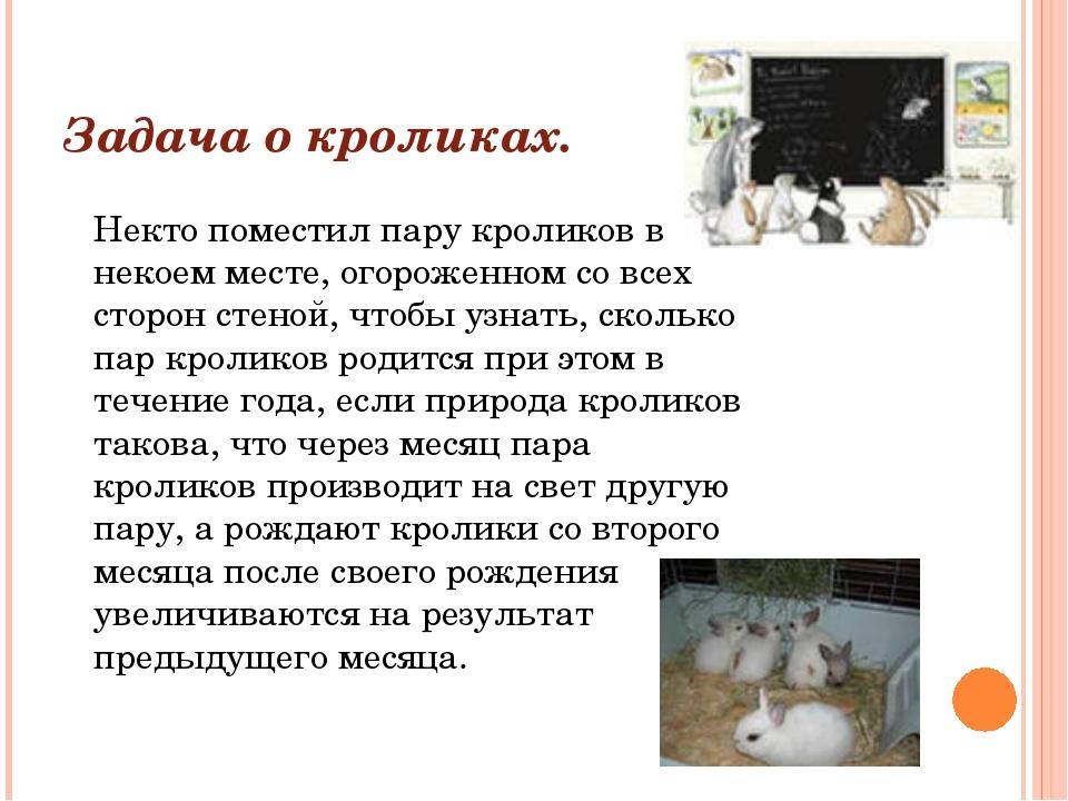 Задача о кроликах. Некто поместил пару кроликов в некоем месте, огороженном с...