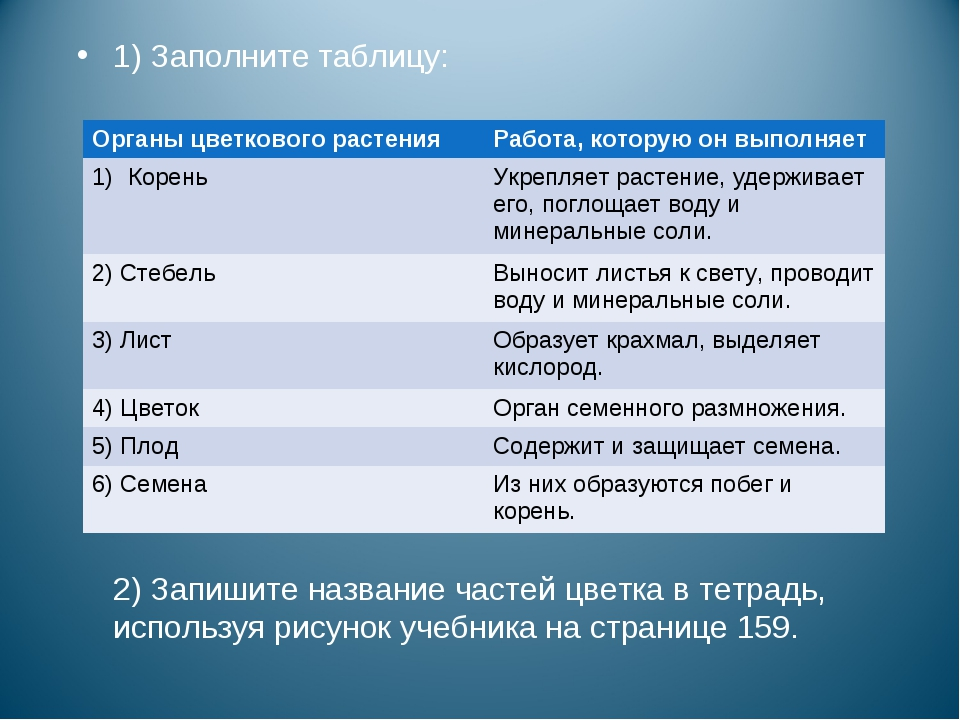 1) Заполните таблицу: 2) Запишите название частей цветка в тетрадь, используя...