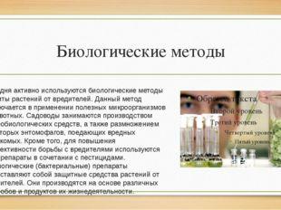 Биологические методы Сегодня активно используются биологические методы защиты